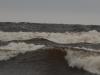 sandbankarna2011-12
